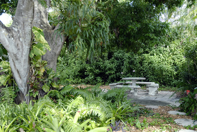 vegetarian friendly home rental in south florida, fort lauderdale. Vacation rental, environmentally friendly cottage for rent, low voc paints, vegetarian kitchen. Haskell's House - a vegetarian and environmentally friendly rental cottage in Fort Lauderdale, Florida.  Weekly and Monthly vacation rentals are available at this cute, vegan, self-catering, environmentally-friendly, green, and chemically free cottage for strict vegetarian and chemically sensitive visitors.  Vacation rental, vacation home, vacation house, vacation cottage, vacation cabin, florida vacation rental cottage, florida vacation rental cabin, florida vacation rental home, florida vacation rental house, south florida, broward county, palm beach county, Fort Lauderdale, South Florida, vegetarian vacation cottage for rent, vegetarian vacation home for rent, vegetarian vacation cabin for rent, vegetarian vacation house for rent, florida vacation cottage for rent, florida vacation cabin for rent, florida vacation house for rent, florida vacation home for rent